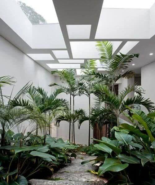 Die besten 25+ tropische Küche Ideen auf Pinterest tropisches - tropische pflanzen im garten