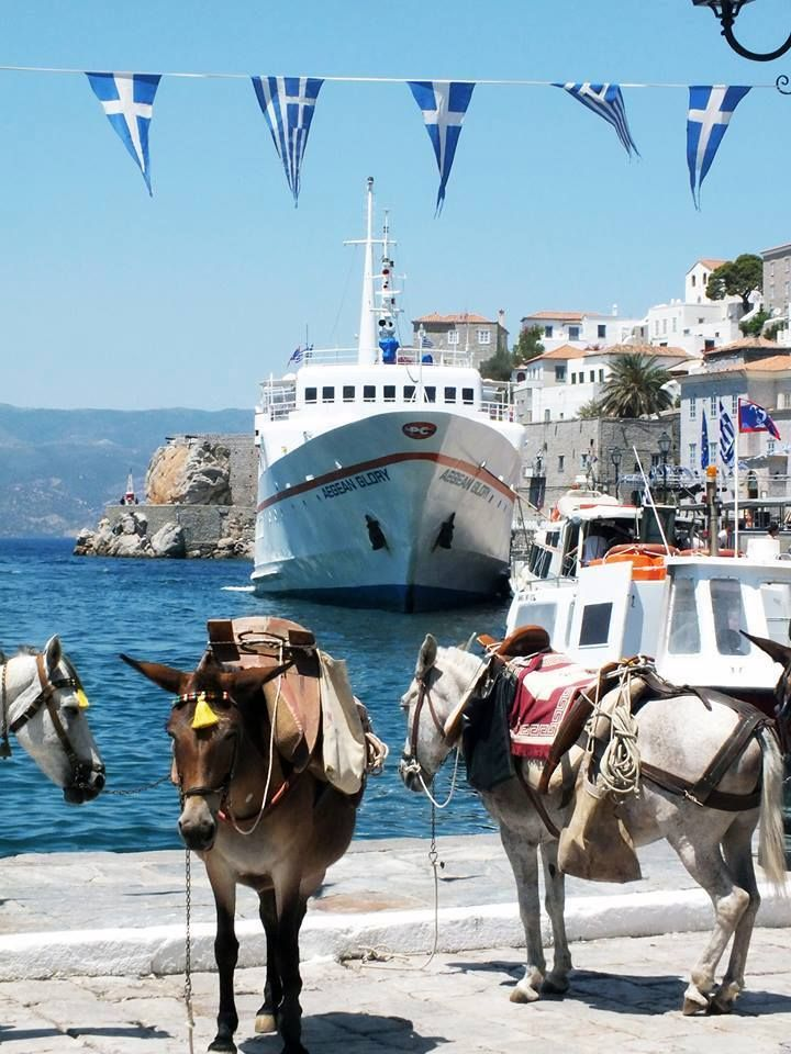 Hydra , Greece #island #world #places #travel #trips #donkeys #greekflags #Hydra #Greece