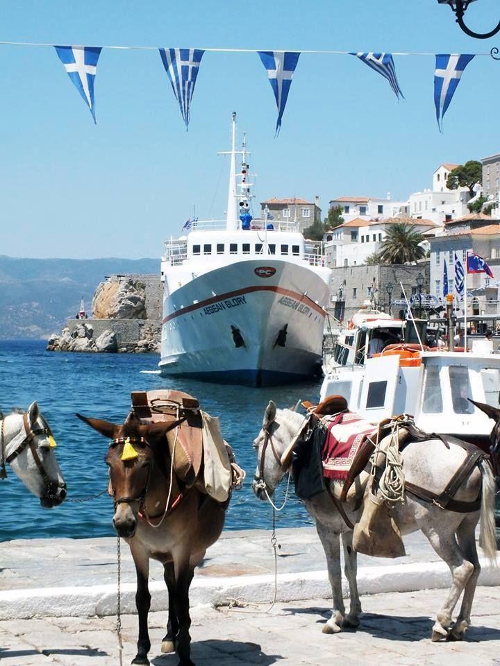 Hydra , Greece #island #world #places #travel #trips #donkeys #greekflags #Hydra #Greece