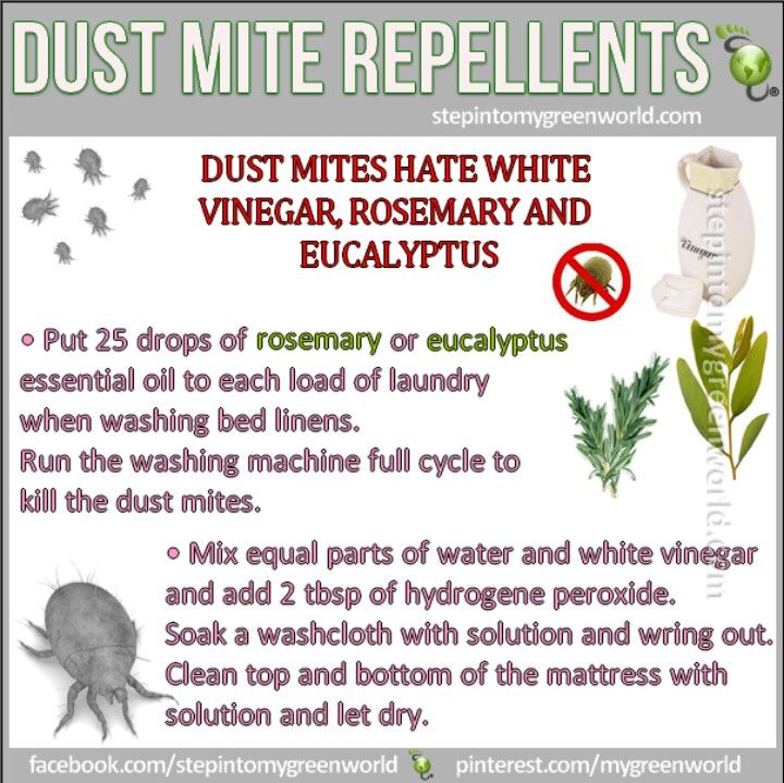 for my poor child with dust mite allergies; perhaps a