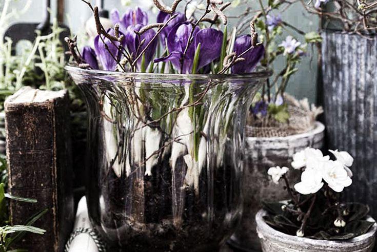Trädgårdsprylar i Sundsvall - tips från himlamycketsverige