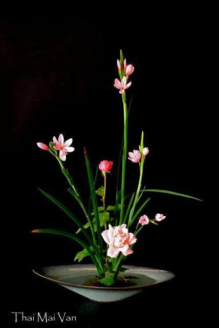 Style Moribana - Art floral Ikebana