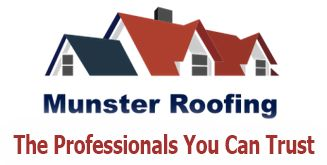 Munster Roofing Pinguis Website Design Logo text images and content supplied websites for Roofers