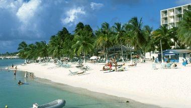 Palm Beach Aruba Things to do (aruba.com)