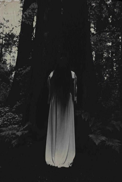 Entranced and curious, the dark forest is calling to her, and she has no choice but to reply.
