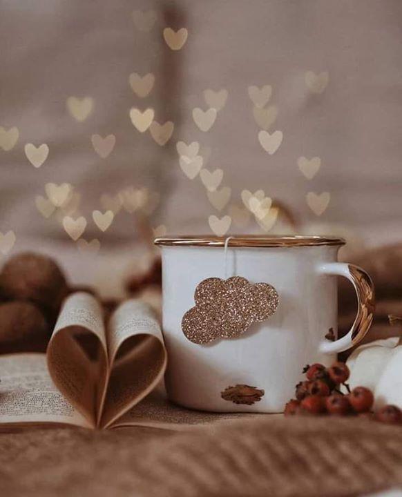 الاهتمام لا يطلب لا يصاغ لا يعتب على قلته الاهتمام يمنح فقط بقدر المحبة بقدر الاشتياق