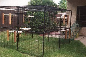 Premium Outdoor Garden Cat Kennel Enclosures