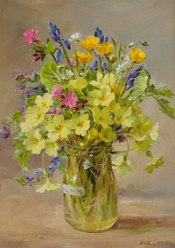 Anne Cotterill - Primroses, bluebells and pink campion