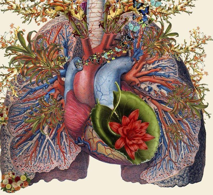 Экология здоровья: Впервые слизь в нашем организме образуется еще в раннем детстве тогда, когда мы съедаем что-то вареное. По мере того как мы растем...