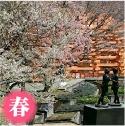 Hakone Open-Air Museum in Japan