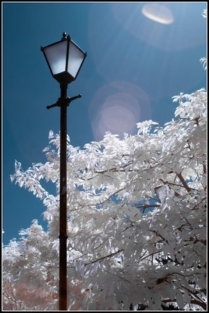 12 Best Lamp Post Images On Pinterest Floor Standing