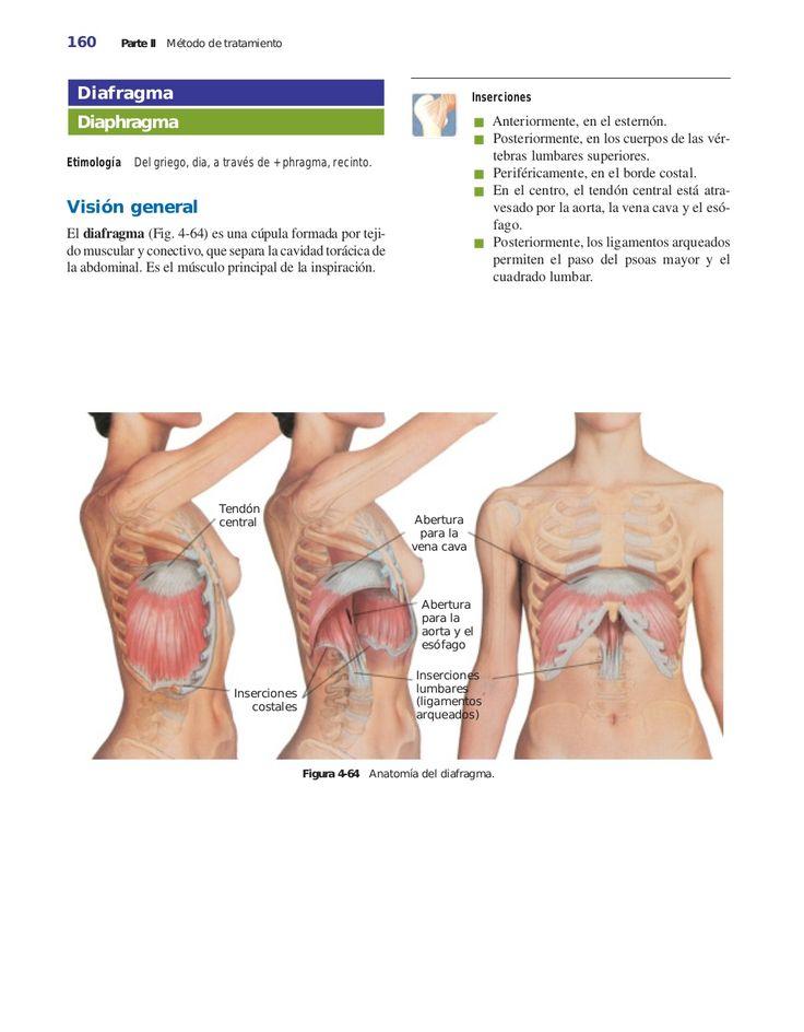 La osteocondrosis de 1 grado del departamento lumbar el dolor se refuerza por la mañana