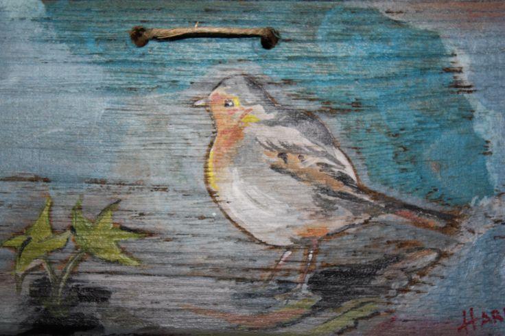 πουλι