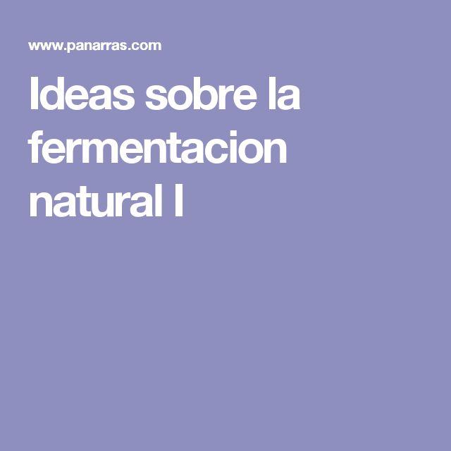 Ideas sobre la fermentacion natural I
