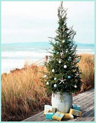 #Coastal Style: An Aussie Beach Christmas     -