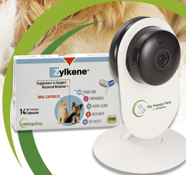 10 winners will each receive remote pet camera and a 30-day supply of Zylkene calming supplements for their cat or dog! Prize packs include a remote pet camera and a 30-day supply of Zylkene, a non-drowsy supplement that naturally calms cats.