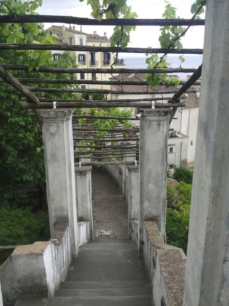 Giardini della Minerva (sa)