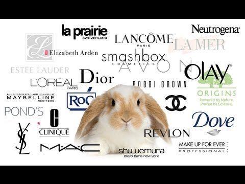 ANIMAL TESTING - MAKEUP COMPANIES AND THE EU BAN - YouTube  #makeup #beauty #animal