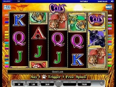 Slot game Cats - https://www.slotzzz.com/games/slot-game-cats #Slotgame #Cats #FreePlay