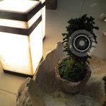 Lámpara de Buro Fabricada en Onyx  Color: Blanco con detalles en Negro  Medidas: 15cm*15cm*30cm de alto
