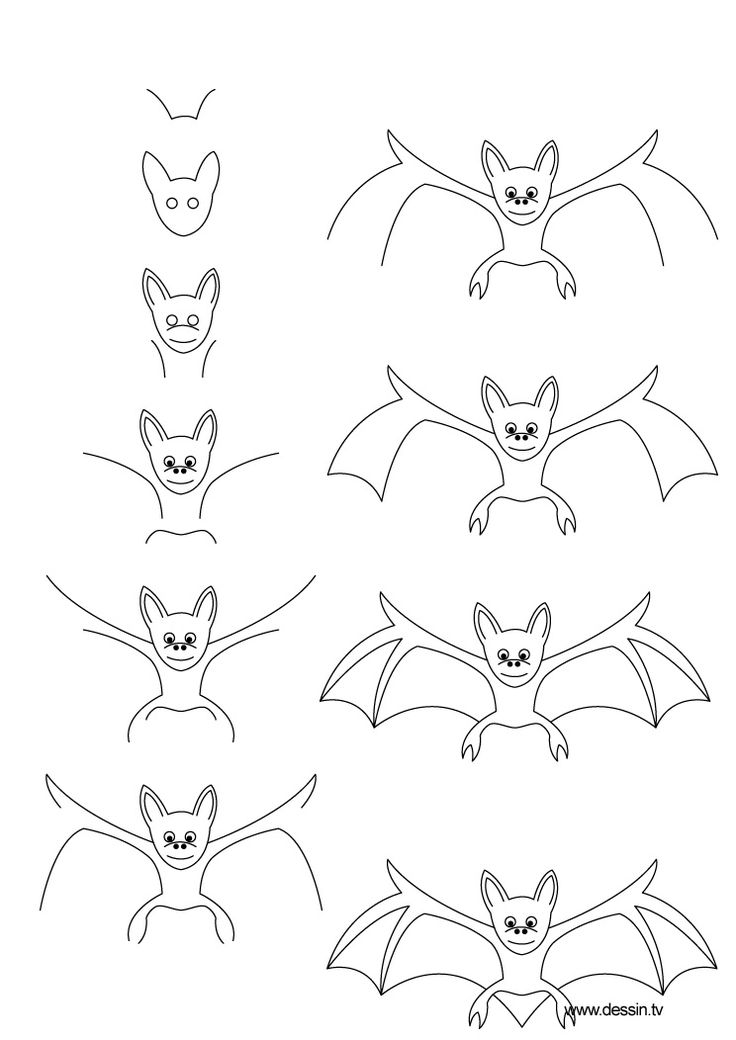 Image result for how to draw a bat