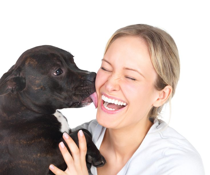 Apprenez la propreté à votre chien ou chiot : le livre