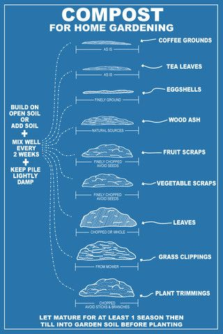 Great compost info graphic!