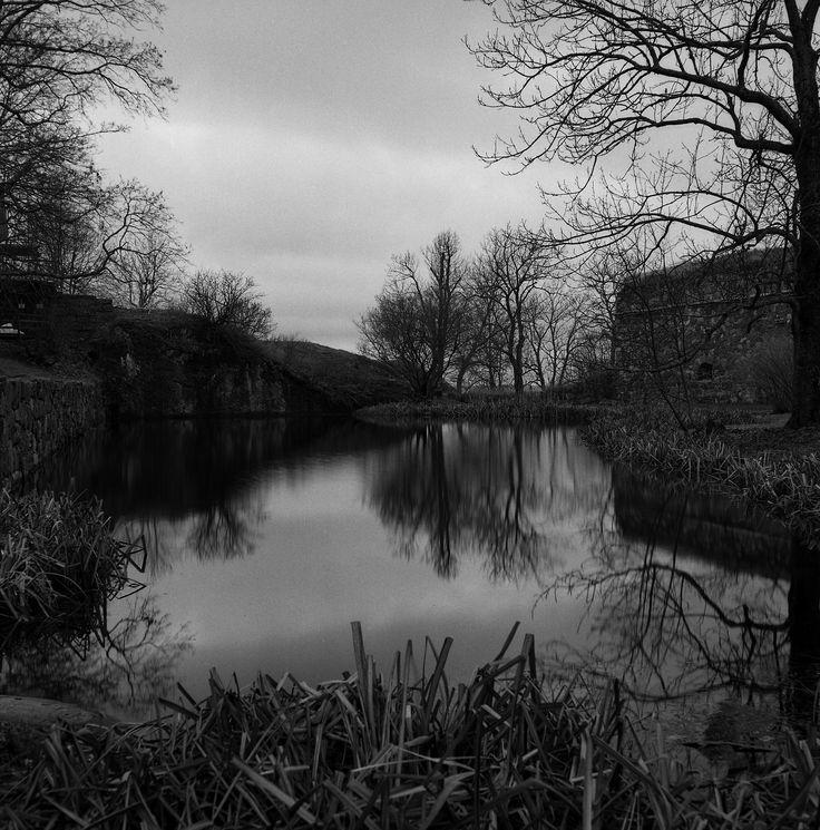 2014_Nov_Suomenlinna_Rolleicord-Xenar_006