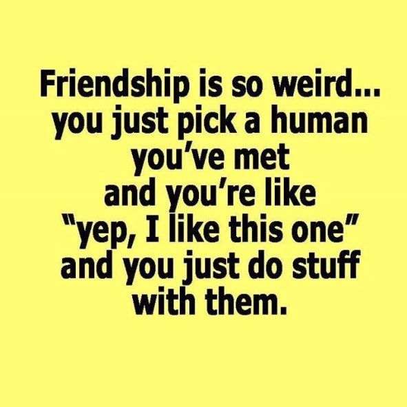 Funny Quote About Friendship Custom Best 25 Funny Friendship Quotes Ideas On Pinterest  Funny True