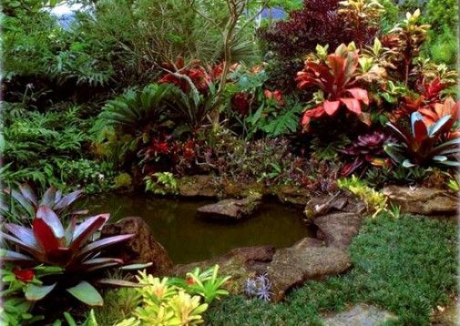 tropical garden design ideas the best garden design landscape 505x358 Simple Garden Designs