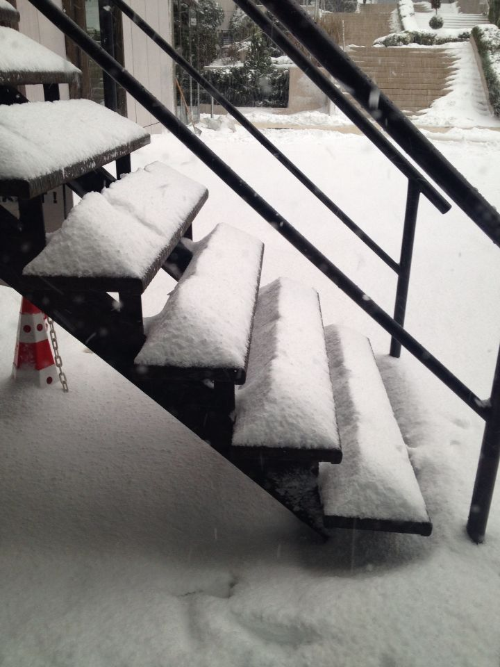 snowy stairs...