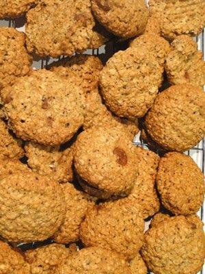 Lactation Boosting Cookies (DIY)