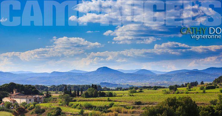 Panoramique du domaine de Campaucels