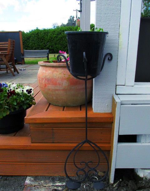 Re-purposed cast iron candle stick holder turned upside down. The pot sits inside the legs and has been planted with cascading Lobelia  seedlings.