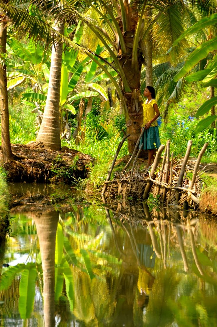 I like the yellowy/bluey play to make up the green in Kerala's Backwaters, India.