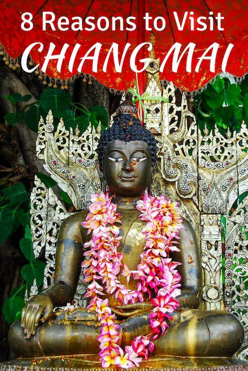 Reasons to visit Chiang Mai, Thailand and why I'd take it over Bangkok any day.