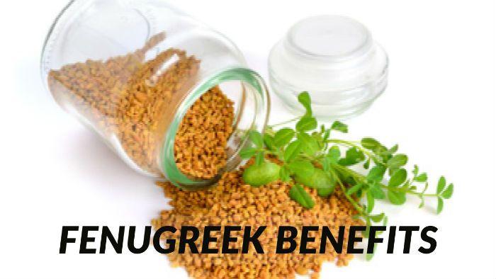 Fenugreek benefits