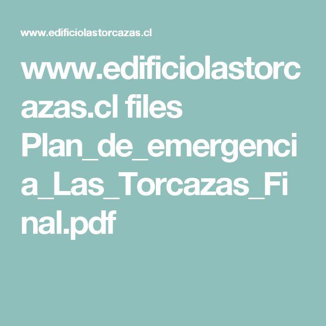 www.edificiolastorcazas.cl files Plan_de_emergencia_Las_Torcazas_Final.pdf