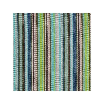 Catstripe Multi Aqua - No Chintz