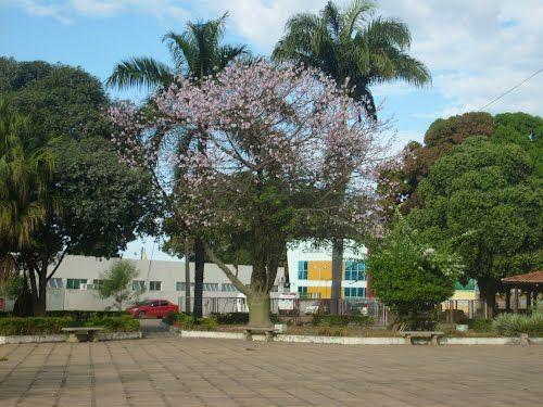 Formosa do Rio Preto (Bahia) Brasile   ... de Formosa Do Rio Preto Bahia e arredores. Navegue pelas imagens e