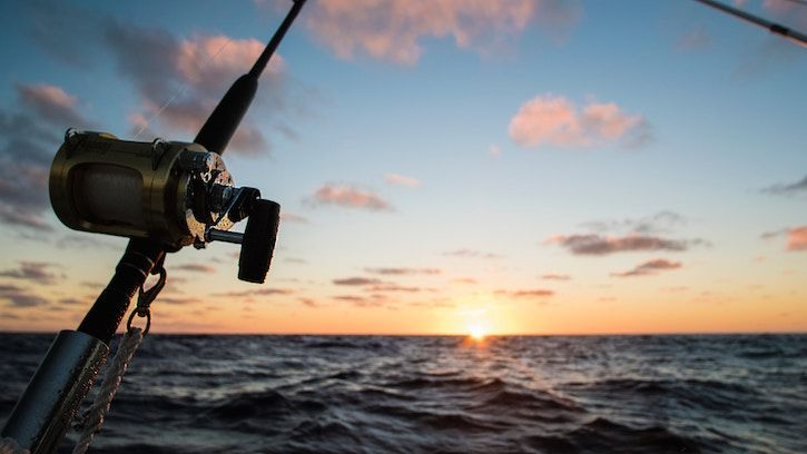 If Fishing Is One Of Your Favorite Pastimes Then Jax Needs To Be On Your Shortlist For Vacation Here Are S Salt Water Fishing Sea Fishing Deep Sea Fishing