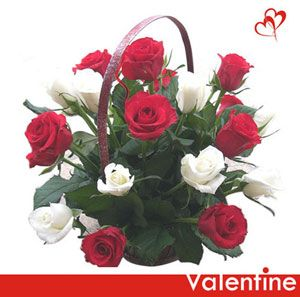 Signifying a timeless classic beauty, send this charming floral gift to a very special lady in your life. Handle basket arrangement of 15 red and white roses. http://www.tajonline.com/valentines-day-gifts/product/v1803/love-u/?aff=pint2014/