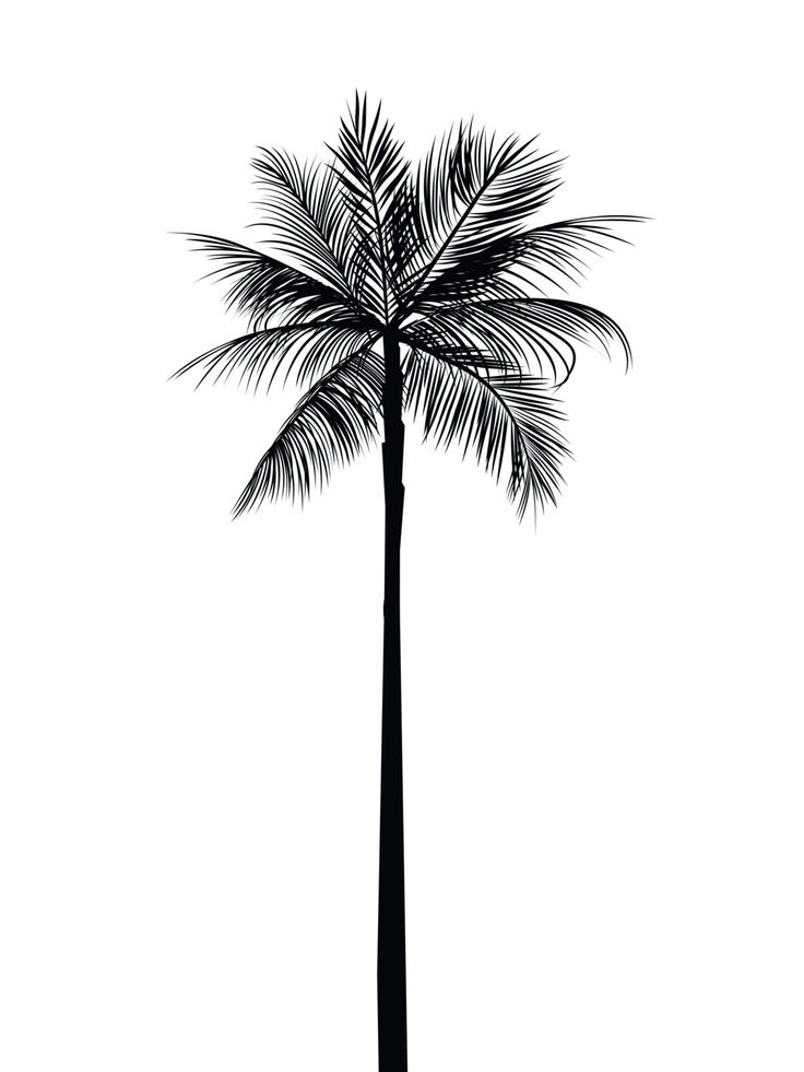 Palm Tree Print, Palm Leaves Print, Palm Tree Art, Palm Tree Wall Art, Printable Home Decor, Summer Art, Summer Print, Black and White Palm