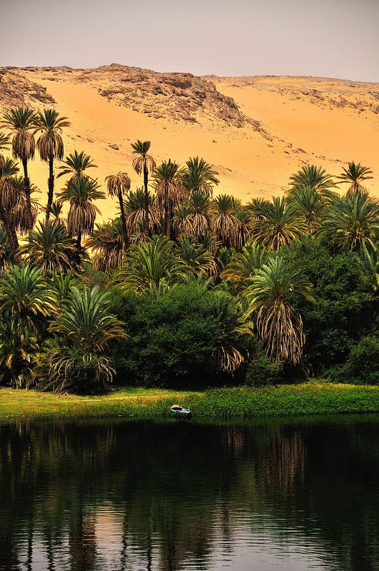 In-the-know travellers are seizing the opportunity to visit Egypt's famous tombs and temples while there are no crowds – and the best way to do it is by following the mighty River Nile on a cruise...  Read more: http://www.lonelyplanet.com/egypt/travel-tips-and-articles/top-five-stops-on-a-nile-cruise#ixzz3Kr7C9MYD