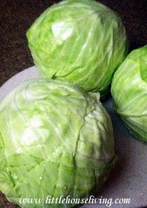 Canning Cabbage - Little House Living