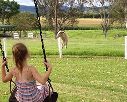 Proudly Family Friendly!!! Kids Country Holiday NSW E - jill.perram@bigpond.com https://www.facebook.com/pages/MANSFIELD-COTTAGE-BARRINGTON-Barrington-Tops-Holiday-Accommodation/341811962165