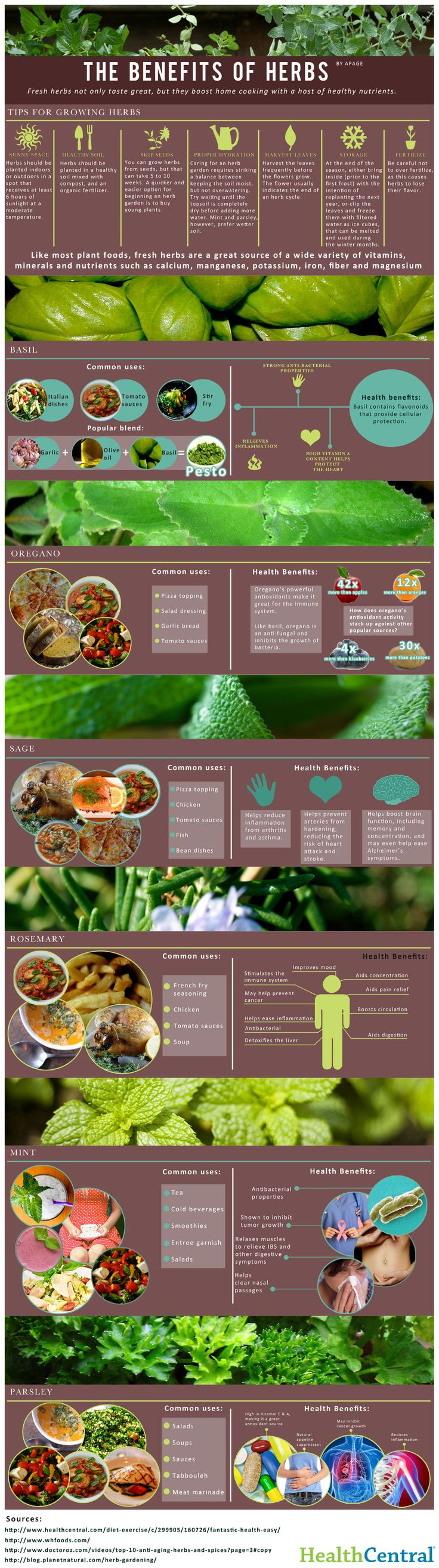 Herbs are a great addition to any meal. If you aren't familiar with how to use herbs in your kitchen, this infographic will be sure to help you. There are some great tips on here for any food lover!
