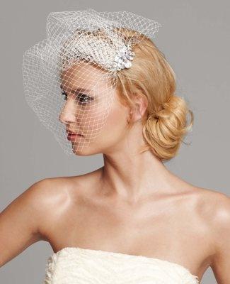 birdcage veil :: stunning!