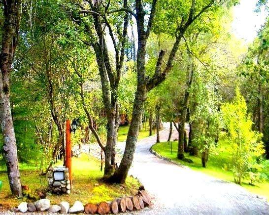 Las Torres del Bayo   Cabañas Villa La Angostura   predio