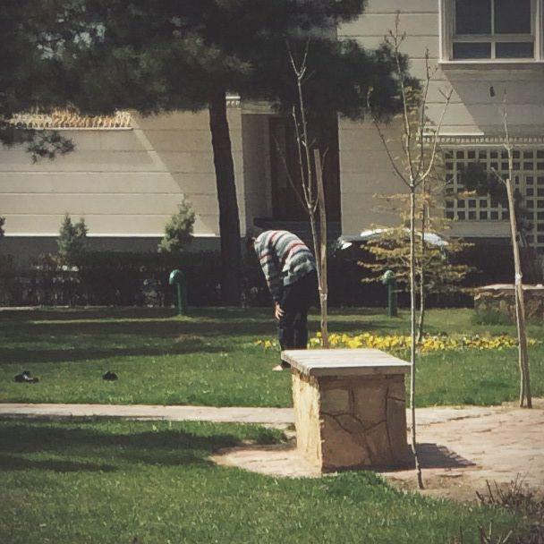 انسانم !!! ساکت ، چون درخت سیب!! گسترده  ، چون مزرعه یونجه !! و بارور ، چون خوشه بلوط !! به جز خداوند چه کسی شایسته پرستش من خواهد بود ؟!!  روایت : حسین پناهی  عکس : مهیار متبسم